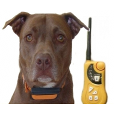 Электронный ошейник для собак n1